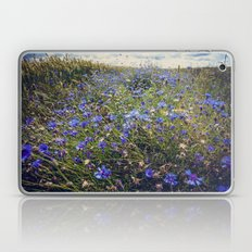 Cornflowers Laptop & iPad Skin