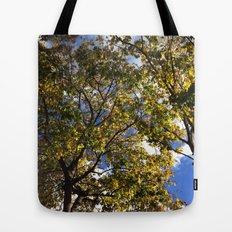 Spring Shine Tote Bag
