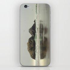 The Rock iPhone & iPod Skin