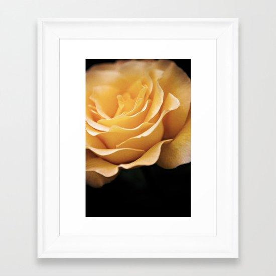 Lady Rowena- Golden Rose  Framed Art Print