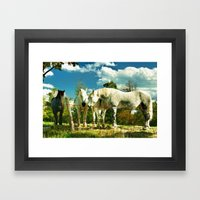 Amish work horses Framed Art Print