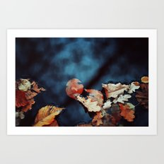 Leaves and Water Art Print