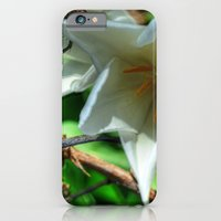iPhone & iPod Case featuring Flower - HDR by Ornithology