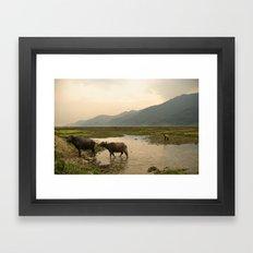 Crossing Framed Art Print