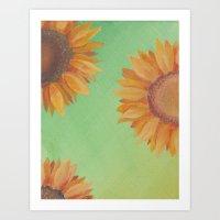 Asteraceae Art Print