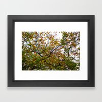 Autumn Patterns #3 Framed Art Print