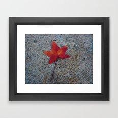 One Leaf Framed Art Print