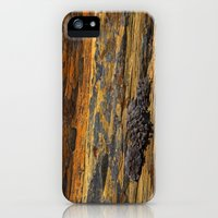 iPhone Cases featuring Sandstone by Barbara Schultheis