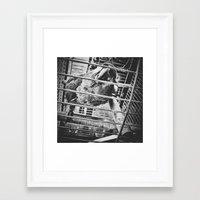 Parrot I Framed Art Print