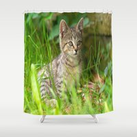Sweet Baby Tiger Shower Curtain