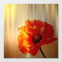 Copper Poppy Canvas Print