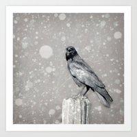 The Stately Raven Art Print