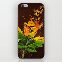 Monarchs iPhone & iPod Skin