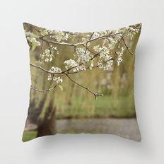 Spring-scape Throw Pillow