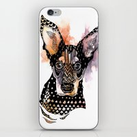 Lexy iPhone & iPod Skin