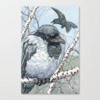 Pensive Crow Canvas Print