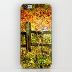 Split Rail and Fall Textures iPhone & iPod Skin