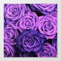 Purple Roses Canvas Print
