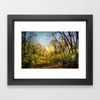 laumeier Fall Framed Art Print