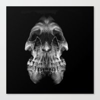 Skully Canvas Print