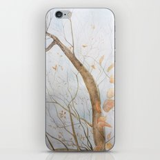 Watercolor under the trees iPhone & iPod Skin