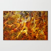 Abstract Red Canvas Print