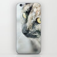 The (Homeless) Huntress iPhone & iPod Skin