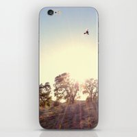 A Hawks View iPhone & iPod Skin