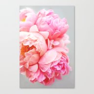 Canvas Print featuring Peonies Forever by Ez Pudewa