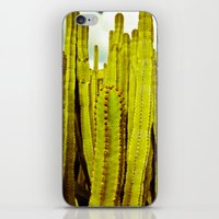 E. canariensis iPhone & iPod Skin