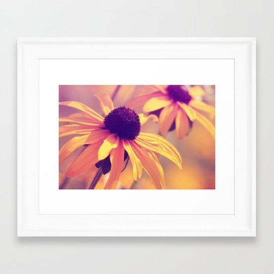 Yellow Flower - Rudbeckia Framed Art Print