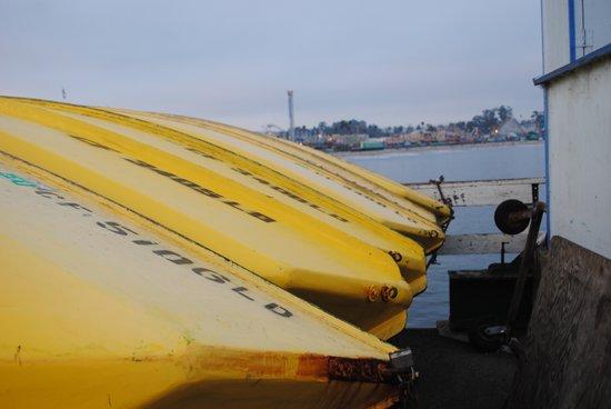 Yellow Boats Art Print