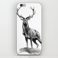All Muscle - Red Deer St… iPhone & iPod Skin