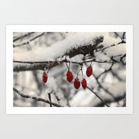 Finding Red Art Print