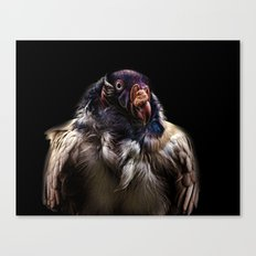 Bad Birdy Canvas Print