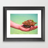 Friends Under The Sea Framed Art Print