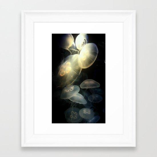 Jellyfish Darkness to Light Framed Art Print