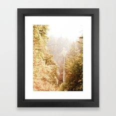 OREGON GORGE WATERFALL Framed Art Print