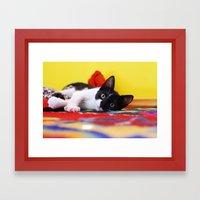 cat #1 Framed Art Print