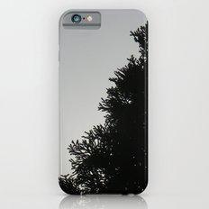 Hazy Morning iPhone 6 Slim Case
