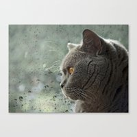 Canvas Print featuring Rainy Day Blues by Fran Walding