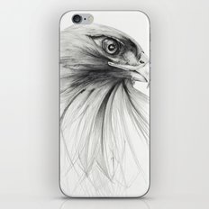 HAWK iPhone & iPod Skin