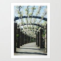 Southampton East Park, Wisteria Art Print