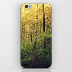 A walk in the forest iPhone & iPod Skin