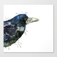 My Rook Canvas Print