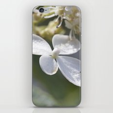 4 petal flower iPhone & iPod Skin