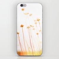 Beach Flora iPhone & iPod Skin