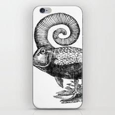 Carpé Duckems iPhone & iPod Skin