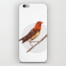 Messenger 006 iPhone & iPod Skin