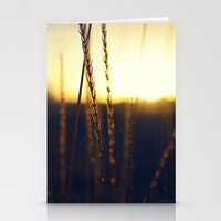 Prairie Sun Stationery Cards
